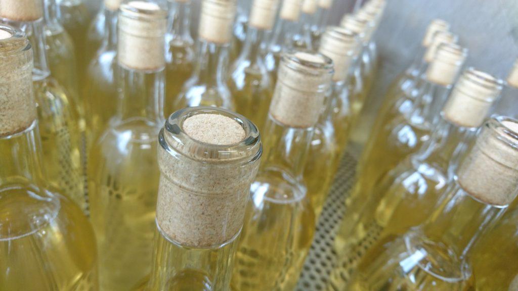 ワインボトルがサウナへ