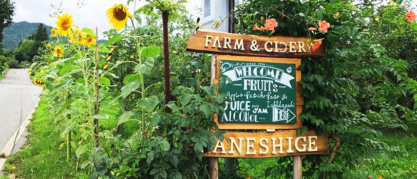 カネシゲ農園の歴史