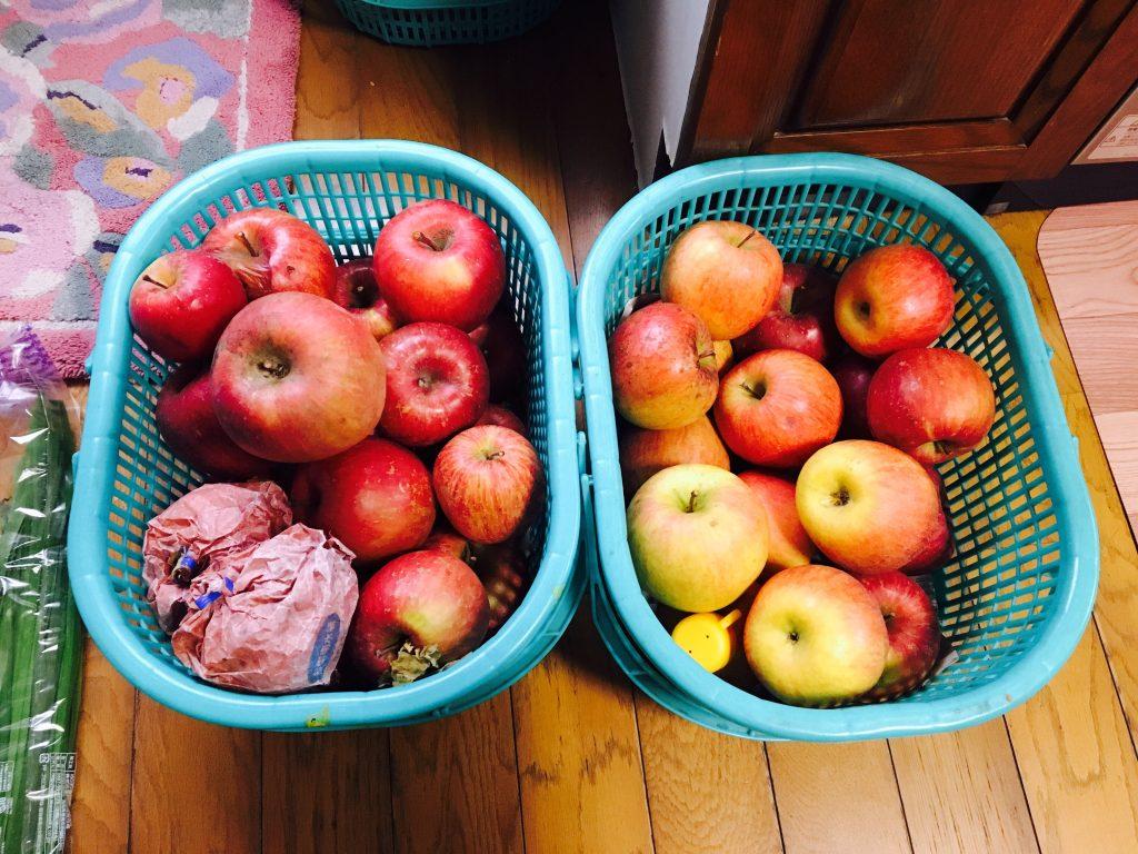 『桃やメロンのように急いで食べなくても、日持ちするから大丈夫!』